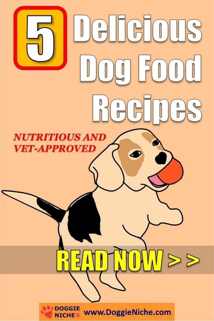 I Really Loved The Dog Food Recipes There May Only Be Five