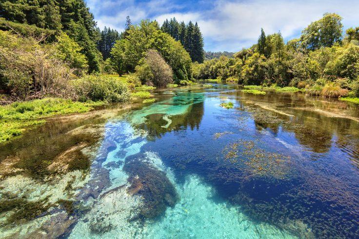 Hamurana Spring Hamurana sping of Rotorua in New Zealand
