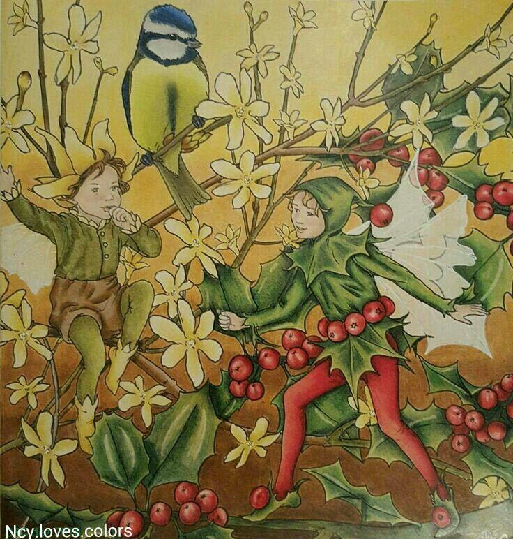 Buch: The flower fairies Illustratorin: Cicely M.Basler  von mir koloriert.