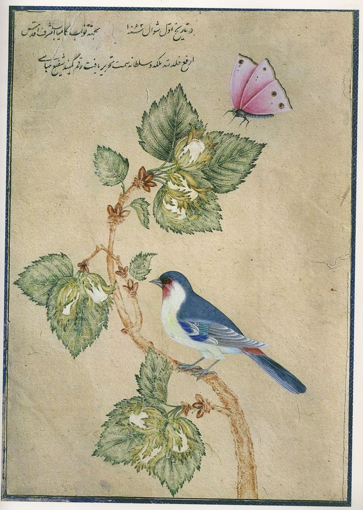 L'oiseau sur la branche - signé Shafi' Abbâsî - 1er shavâl 1062/5 septembre. Le chant du monde - L'art de l'Iran safavide 1501-1736 Assadullah Souren Melikian-Chirvani.