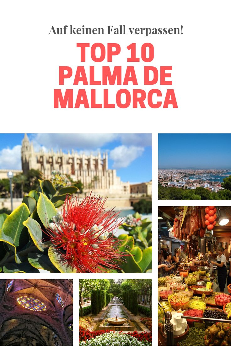 Die Top 10 Sehenswürdigkeiten in Palma de Mallorca