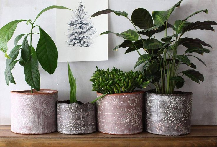 "Polubienia: 50, komentarze: 2 – Anna Czarnocka (@anna.nomen.omen) na Instagramie: ""Moon plant pots. All sold, but I think I will make some more..:) . . . . #warsawceramics…"""