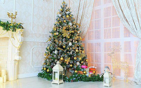 NadyaEugene Photography - Christmas home decoration