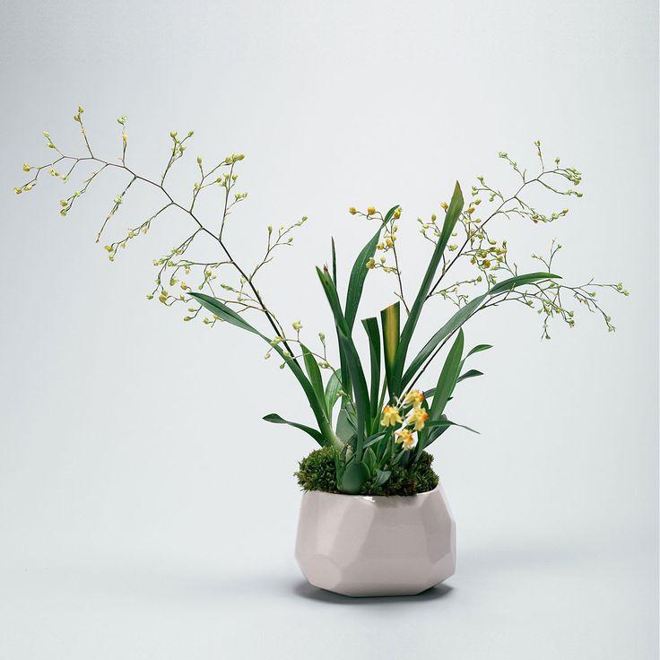 Ever Bud Vase