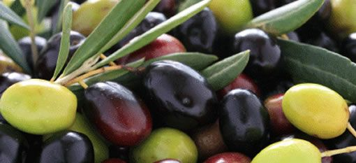 The Riebeek Valley Olive Festival 3-4 May 2014