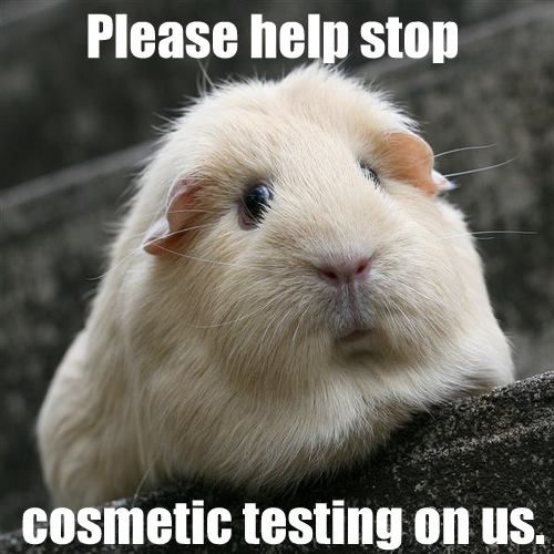 Website about animal research please?