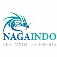 NAGAINDO - Deal with the EXPERTS
