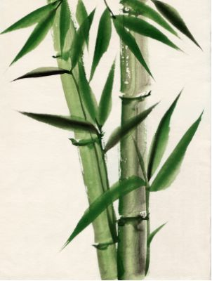Bamboo is used to bring Good Fortune! In feng shui the bamboo plant has long been regarded as a symbol of longevity...but it is also a very powerful sign of good fortune. Even if you cannot put real bamboo in your home, put a painting of the bamboo in your house or office instead.