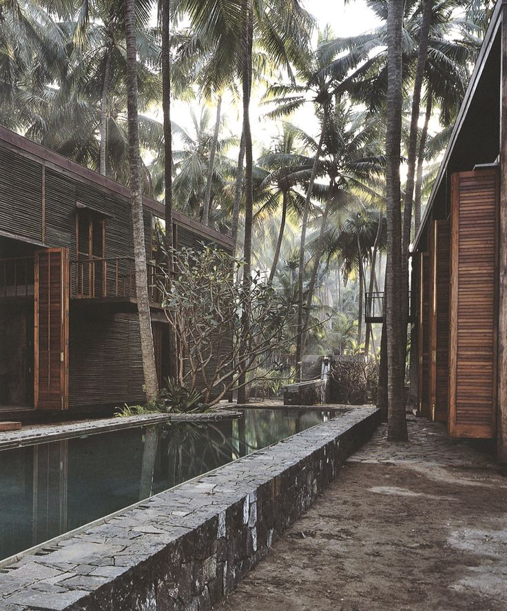 Paradise Backyard: Studio Mumbai. tacloban can work on using the lands where palm trees used to be as new homes using thick thick thick concrete rocks form the mountains
