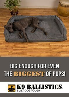 XXL Dog Beds for our Gentle Giants by K9 Ballistics