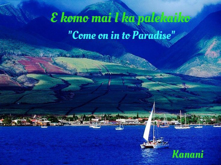 1000 Cruise Quotes On Pinterest: 1000+ Hawaiian Quotes On Pinterest