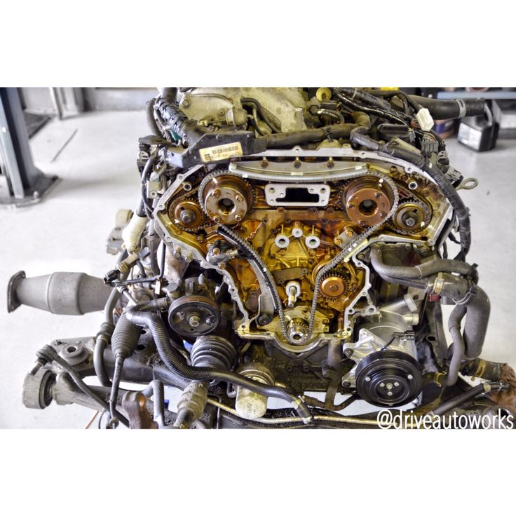 14 best nissan maxima images on pinterest nissan maxima 2006 2005 nissan maxima in for timing chain tensioner failure this fandeluxe Image collections