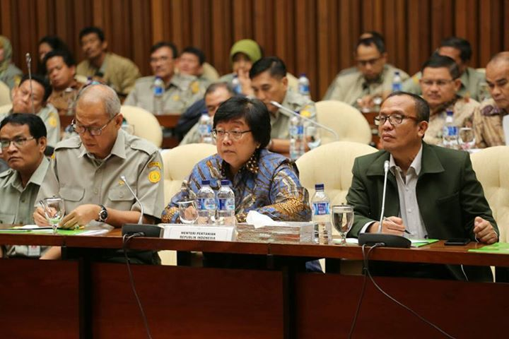 Bahas Anggaran 2018, Kementan Fokus Infrastruktur, Peningkatan Produksi, dan Ekspor Pangan  Jakarta - Memasuki pertengahan tahun 2017, DPR-RI bersama pemerintah sudah menggodok perencanaan anggaran untuk tahun 2018. DPR bersama pemerintah dalam hal ini Kementerian Pertanian melaksanakan Rapat Kerja dengan agenda pembahasan penyempurnaan alokasi anggaran menurut fungsi, program, kegiatan tahun 2018 sesuai hasil pembahasan Badan Anggaran serta pembahasan RKA-K/L dalam RUU APBN-P 2017 bertempat…