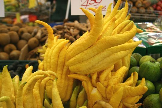 The Buddha's Hand's long, yellow tentacles have a complex lemony aroma and flavor. The fruit has no juice or pulp and the pith is sweet rather than bitter. The rind can be used in any dish that calls for lemon zest (we especially like it in a citrus chiffon cake). Because it is not bitter, whole fingers can be thinly sliced and added to salads or other dishes. The citron can also be candied, preserved, and used to infuse liquors.