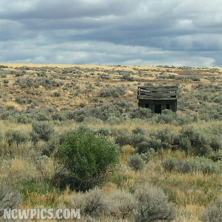 #Abandoned #fixerupper Outside Of #WatervilleWA And
