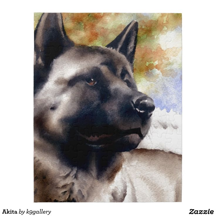 23 best akita dog lover images on pinterest akita dog