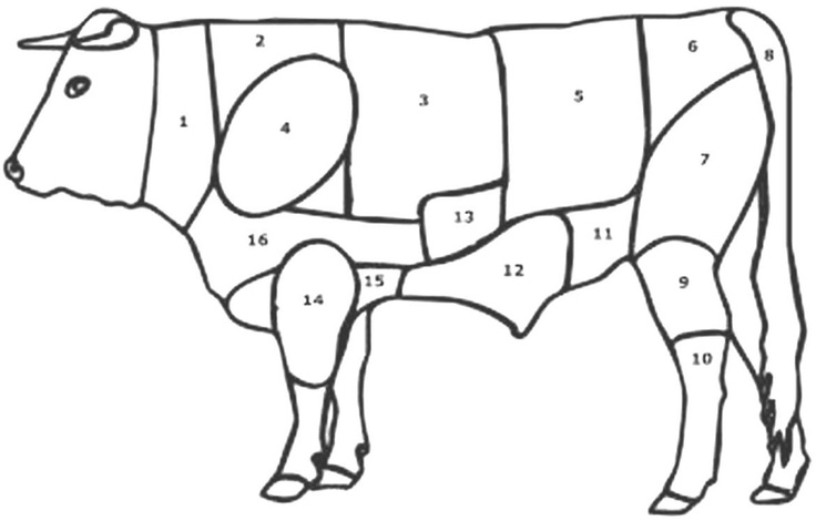 meats coloring pages - photo#25