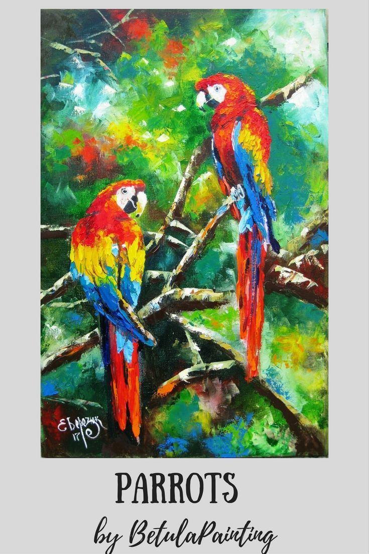 Bird artwork. Parrots oil painting on streched canvas.