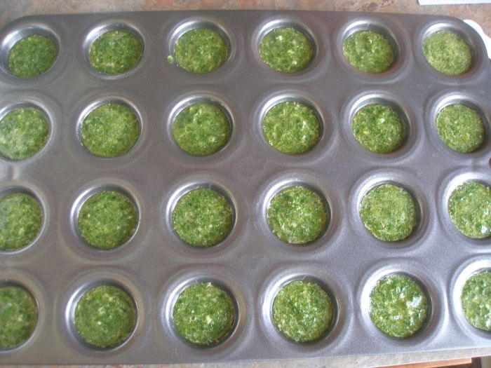 Preserving Cilantro.Recipe, Minis Muffins, Mini Muffins, Olive Oils, Freeze Cilantro, Preserves Cilantro, Ice Cube Trays, Cilantro Sauces, Ice Cubes Trays