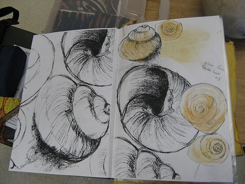 sketch book - shells on Bude beach | love creating textural … | Flickr
