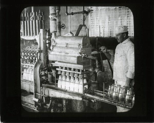 Filling and stopping twelve milk bottles at once, ... | saskhistoryonline.ca