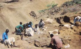 Kenya: Researchers Discover 3.5m-Year-Old Human Fossil in Kenya - allAfrica.com