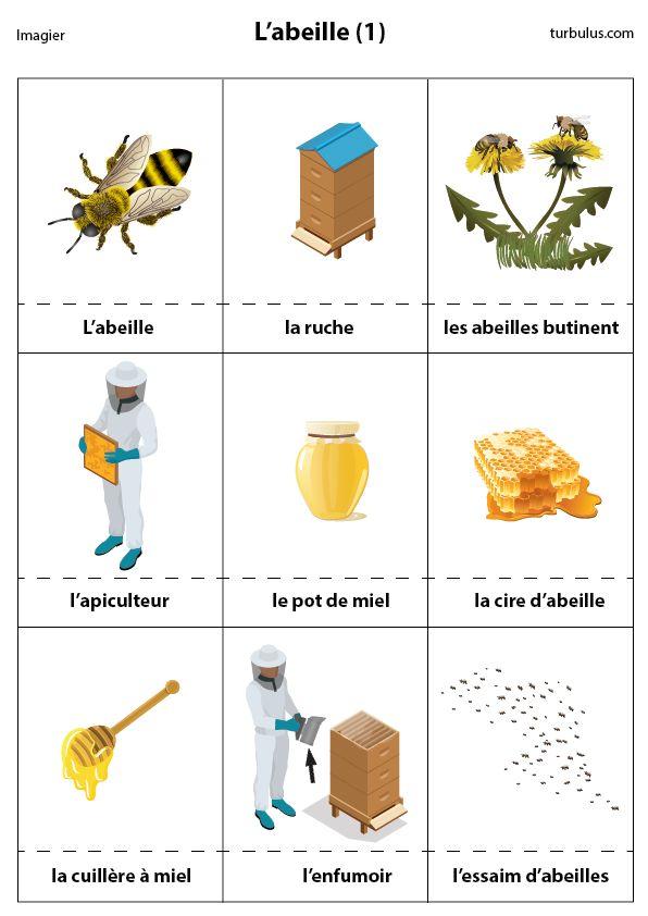 Imagerie des abeilles : la ruche, l'apiculteur, le pot de miel, la cire d'abeille, la cuillère à miel, l'enfumoir, l'essaim et l'abeille qui butine.