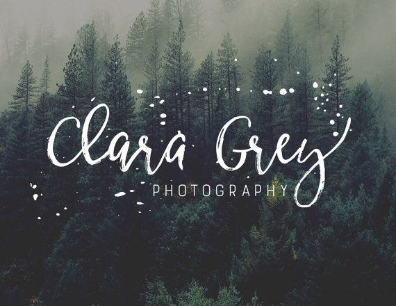 Logo Design Photography Logo and Watermark  by CoffeeandInkDesign
