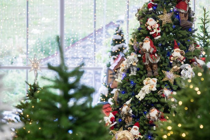 Christmas Displays 2015 at Hayes Garden World