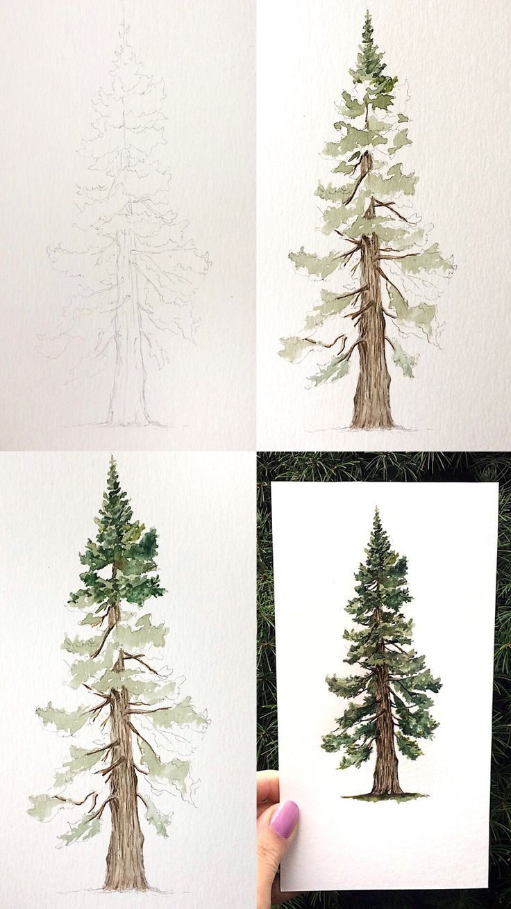 Pine Tree Art Print Wall Decor Watercolor Painting Tree