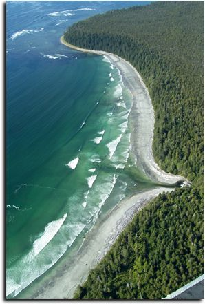 calvin creek nootka island