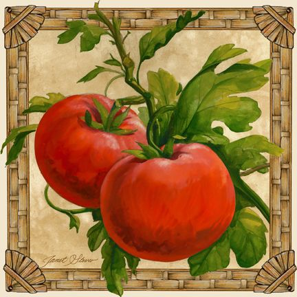 """""""Tomatoes"""" ~ by Janet Stever"""