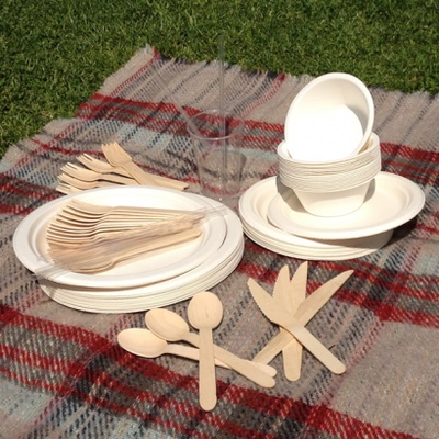 Biodegradable party set