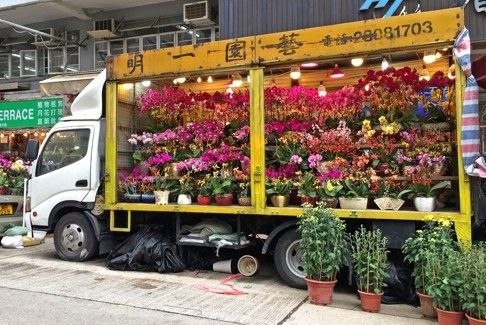 Orchid delivery to Ming Yat Garden on Playing Field Road, Hong Kong Photo: Laura Ma