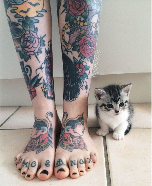 des tatouages et un chat <3