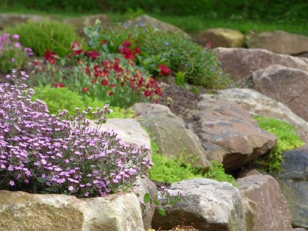 a rock wall garden has unique planting and care needs from an in ground garden and - Rock Wall Garden Designs