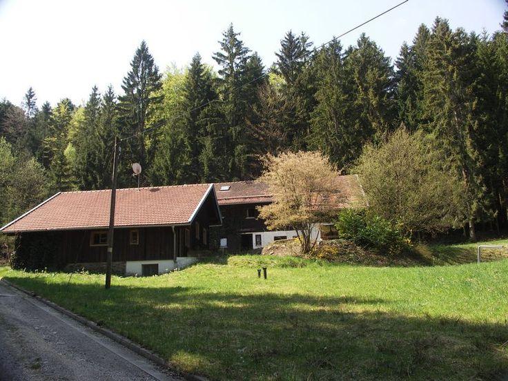 18809960-Ferienwohnung-15-Kollnburg-800x600-0