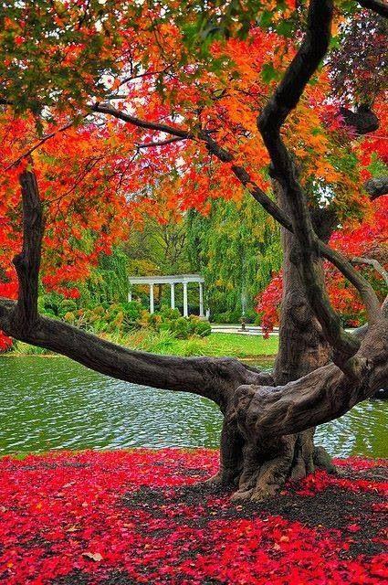 Autumn at Old Westbury Gardens, Long Island, New York