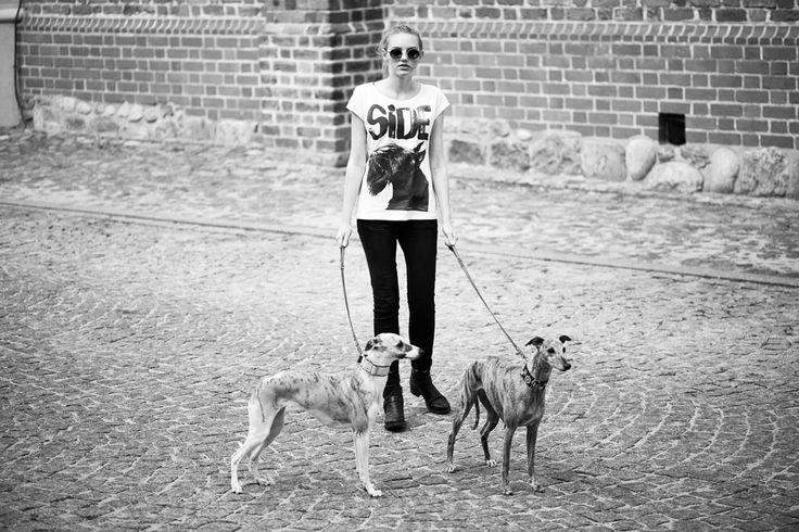 Scottish terrier t-shirt