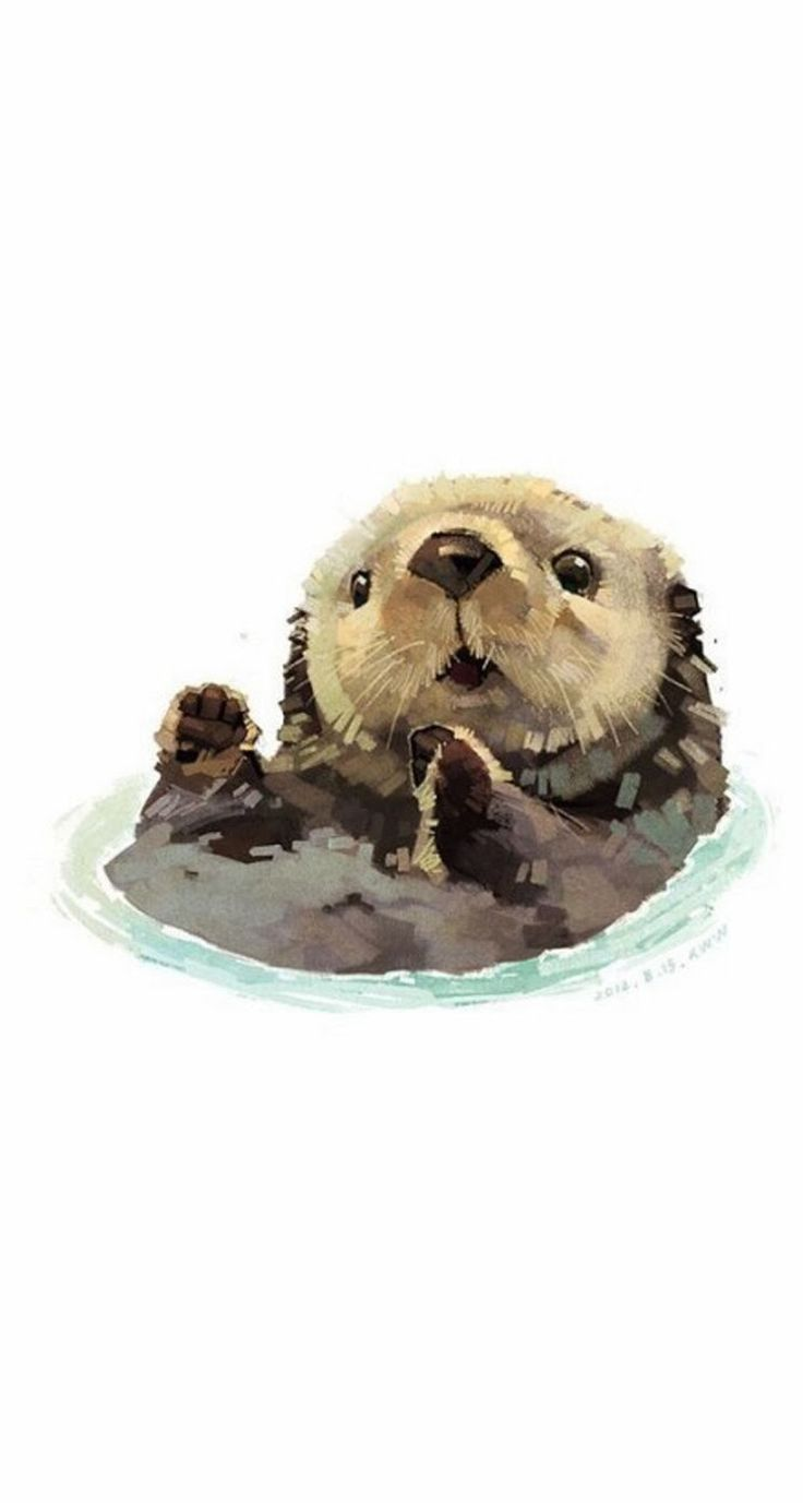 Sea otters- one of my favourite animals ❤️