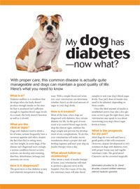 Take the doom out of diabetes - #Veterinary Economics - dvm360
