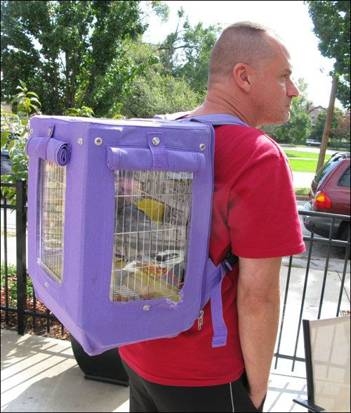 Parrot in a backpack cage  - similar to the Wingabago