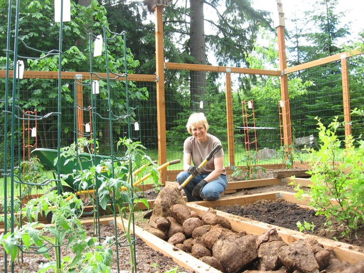 10 Best Images About Enclosed Raised Garden On Pinterest 400 x 300