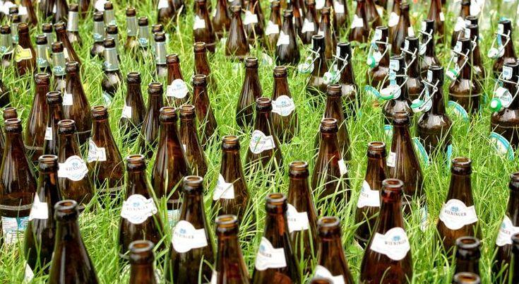 Perfect Bierfalle gegen Nacktschnecken Erfahrungen und Alternativen Im and Garten