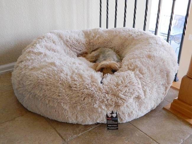 Custom Round Dog Beds - Bessie Barnie Customized Dog Bed l Doggie Diva