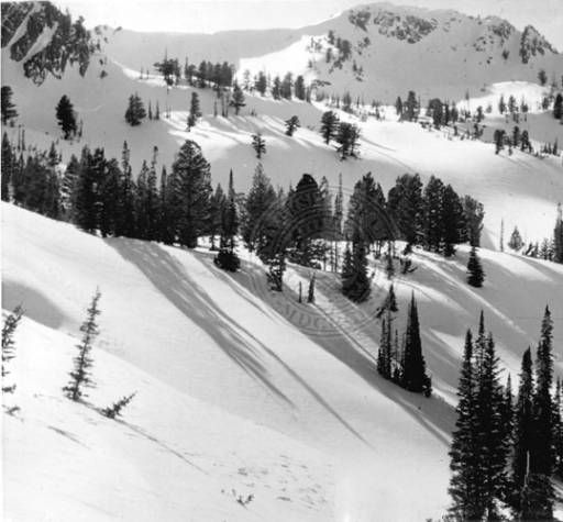 Middle Bowl at Snow Basin :: Univ of Utah - Multimedia Archives Photographs  Skiing, Ski, Utah, Ogden, Snowbasin, Snow Basin