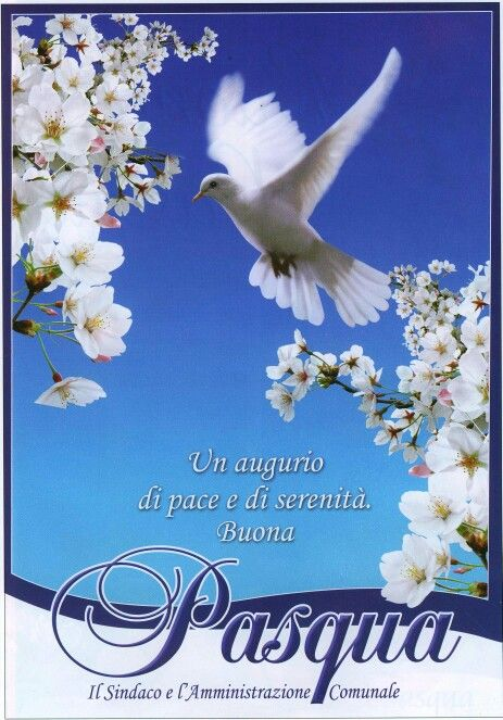 17 best images about pasqua on pinterest happiness and peace buona pasqua m4hsunfo
