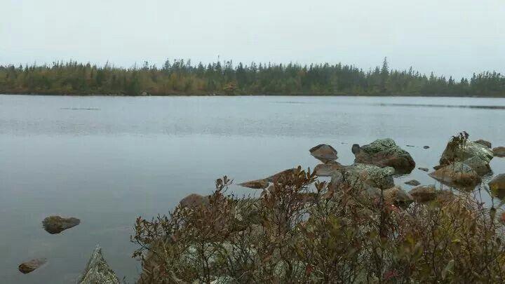 GEARS Pond