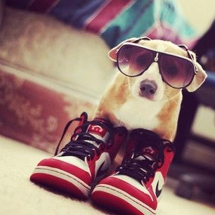 Landen had those shoes :)