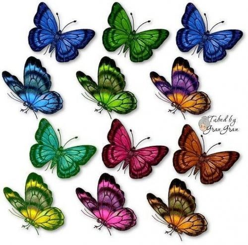 25 best ideas about dibujos de mariposas on pinterest - Imagenes de mariposas de colores ...